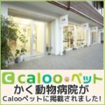 bn_caloopet_260202